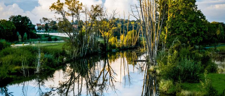 Wilhelminenaue Gewässer