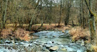 Wander-Geheimtipp: Schlehenberg