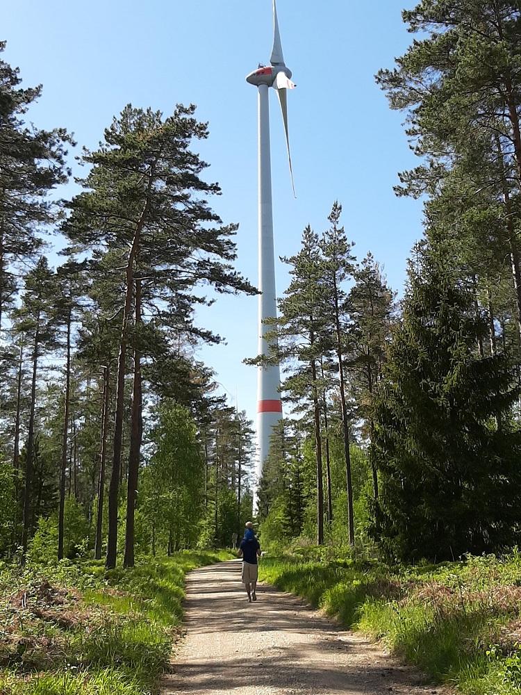 Lindenhardter Forst