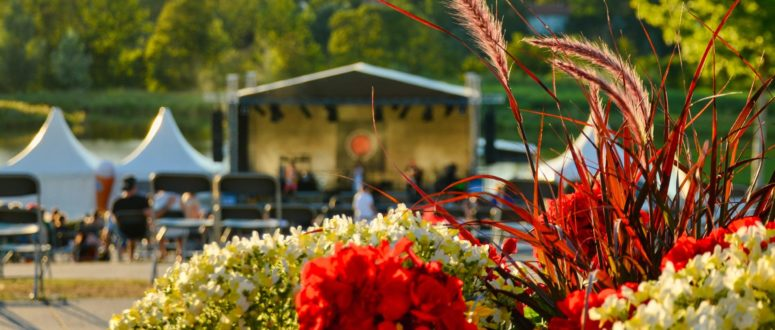 Bayreuth Summertime