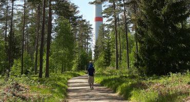 Wander-Geheimtipp: Zu den Windrädern im Lindenhardter Forst